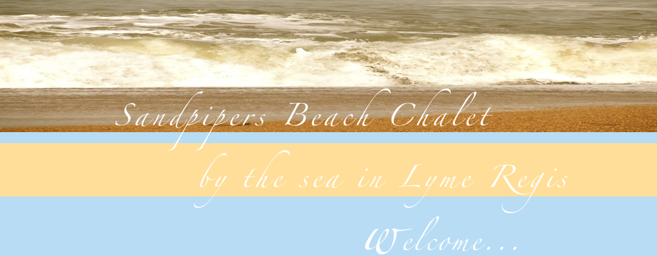 Sandpipers Beach Chalet by the sea in Lyme Regis. Welcome ...